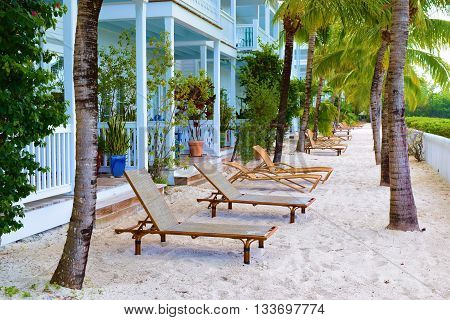 Lounge chairs on a sandy beach with tropical plants and Palm Trees in front of a building