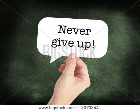 Never give up written on a speechbubble