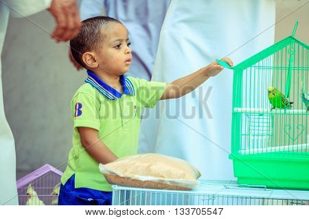 NIZWA, OMAN, MAY 27, 2016: an Omani boy is interested in a parakeet at the bird market in Nizwa, Oman
