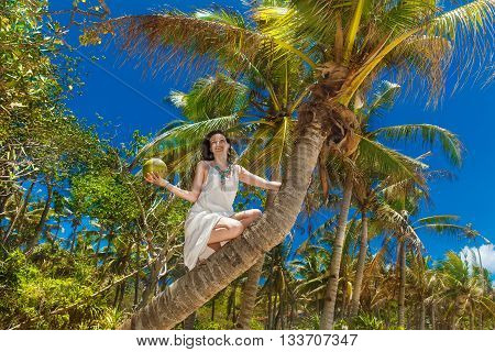 Young beautiful bride in white dress on the palm tree on a tropical beach. Tropical sky in the background. Summer vacation concept.