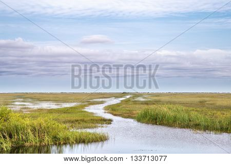 View of the Shark River Slough adjacent to the Tamiami Trail. A slough is slow moving body of water. The Shark River slough flows from Lake Okeechobee to the Florida Bay