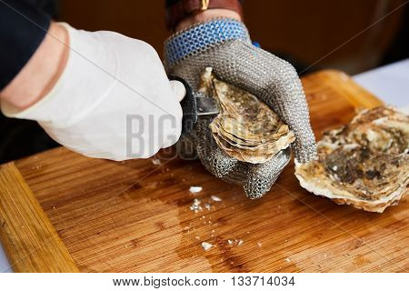 Fresh oyster held open with a oyster knife in a hand with an oyster glove