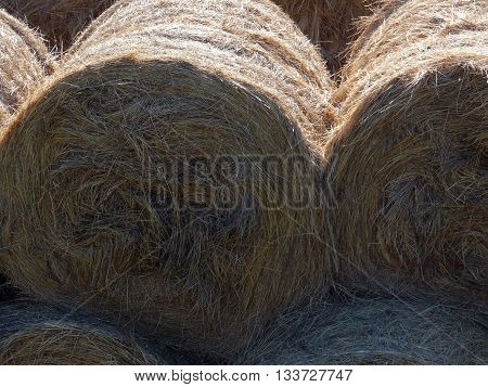 Closeup view of haystack rolls on top of each other