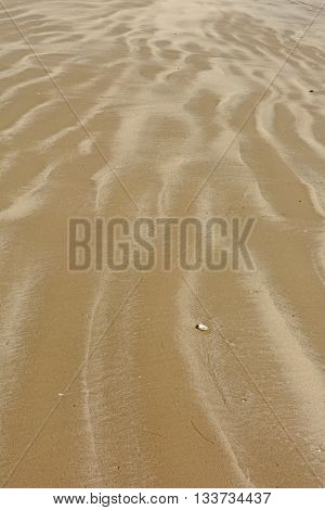 Colorful Patterns on a Sandy Beach on Padre Island National Seashore in Texas