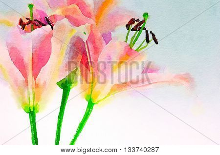 Beautiful Original Watercolor of Pink Lillies
