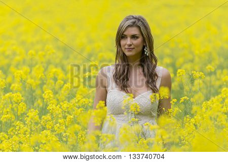 A brunette model in a field of flowers