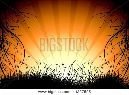Abstract Natural Decorative Sunset Background Vector Illustration