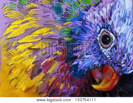 Parrot surrounded by colors. Modern art .