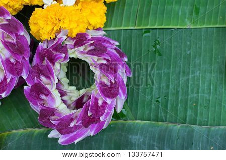 Garland Orchids Jasmine Flower