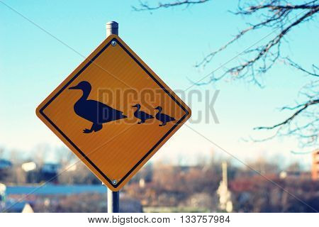 Duck Crossing Warning Road Sign for beware of animal