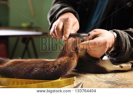Cutting mink fur, Furrier cut leather .