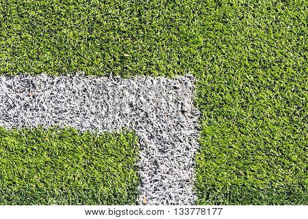 Artificial turf with white marking line, top view