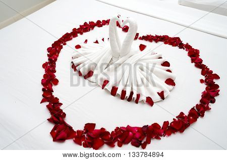 Fold the towel art swans decorated with rose petals on the bed