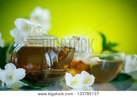 jasmine tea in a teapot with a branch of jasmine on a green background