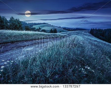 Country Road Through A Meadow At Night