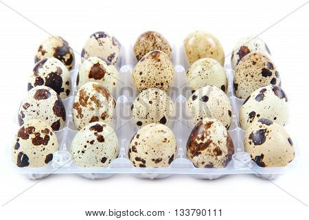 Quail eggs in the container isolated on white background.