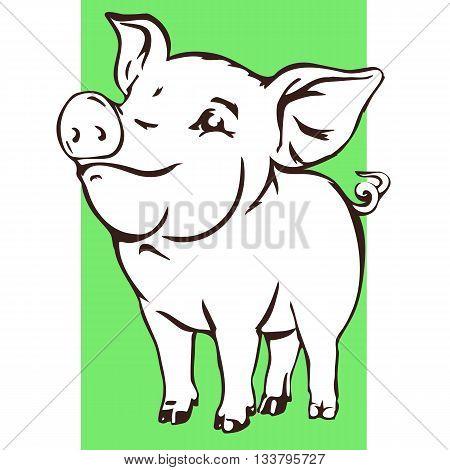 Happy baby pig. Joyful young swine vector sketch isolated on white.