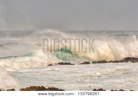 Huge waves being driven back by a storm wind at sunrise along the Eastern Cape coast of South Africa