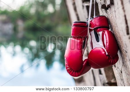 red boxing gloves are suspended on a rock