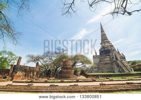 Ayutthaya Historical Park With Tree Branch Blue Sky, Phra Nakhon Si Ayutthaya.