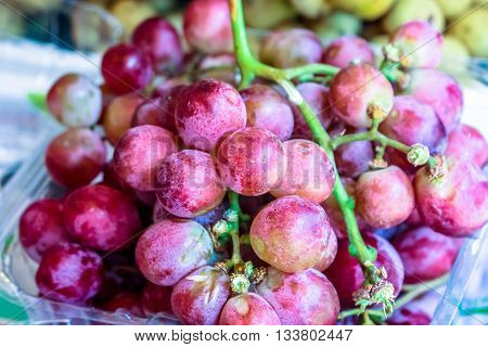 Plenty of grape fruit at the market for sell