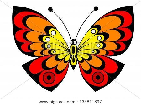 Beautiful butterfly, colorful butterfly, creative butterfly, yellow, red, orange butterfly on white background, wallpaper, exotic butterfly, interesting butterfly, original butterfly, unusual vector butterfly.