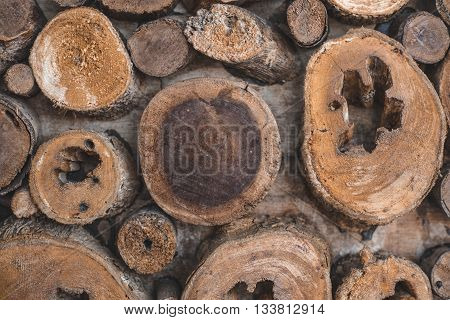 Background of dry teak logs show texture on top.