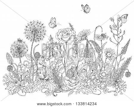 Hand drawn line illustration with wildflowers and insects. Black and white doodle wild flowers bees and butterflies for coloring. Floral elements for decoration. Vector sketch.