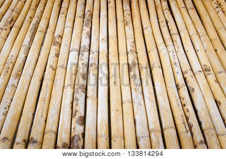 Bamboo flooring. The classical bamboo flooring .