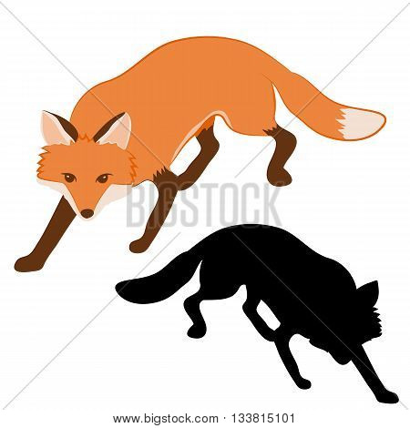 adult red fox silhouette black vector illustration