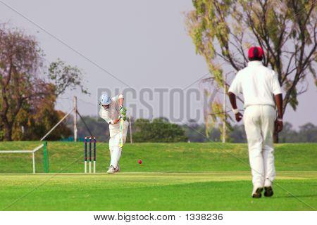 Pelota de golpear de jugador de Cricket