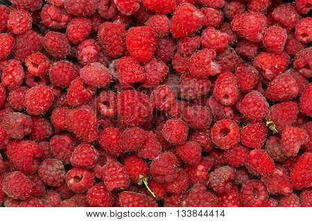 Frame full with fresh raspberries. red Background