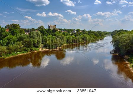 Trees growing on the river Warta bank near the Poznan