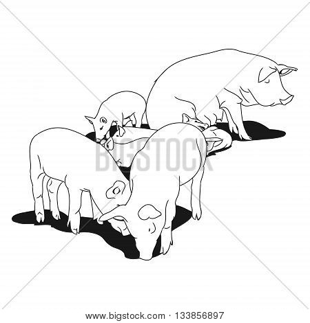 Graphic image of a pig and her piglets. Outline drawing of pig on white background. Vector illustration
