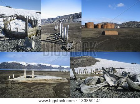 Remnants of the whaling industry in Antarctica - whale bones whale boats and old whaling station