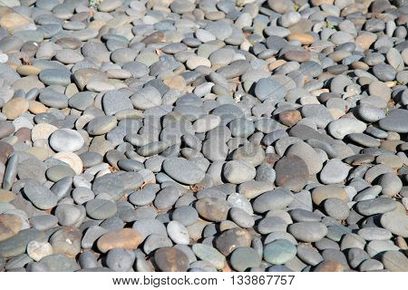 Large pebbles by the river