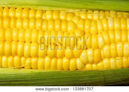 Sweet corn, yellow and green leaves for background.