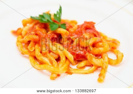 Traditional Tuscan pici pasta with tomato sauce, close-up