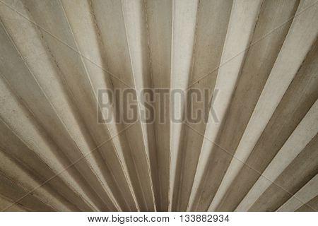 Dried sugar palm leaf dark mono tone