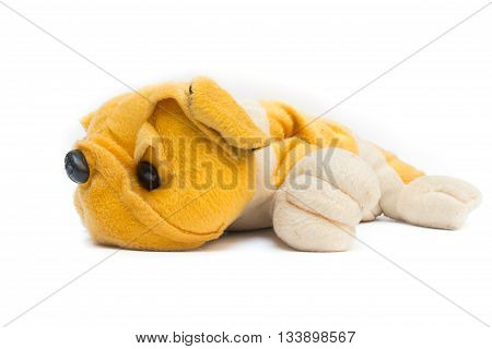 plush toy dog yellow on white background,Dog Plush toy for children.(select focus front toy dog)