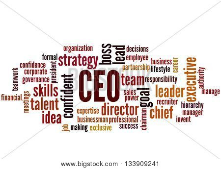 Ceo - Chief Executive Officer, Word Cloud Concept 9