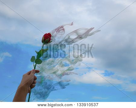 Hand holding rose which is evaporated away, meaning broken heart