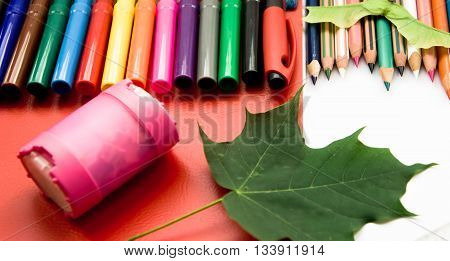on a table school supplies lie, the red folder, pencils of various shades, a maple leaf symbolizes autumn, a ruler and a sharpener for pencils, pen