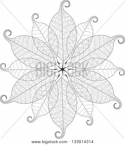 Vector beautiful delicate macro leaf mandala. Lacy leaves