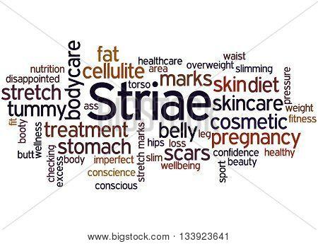 Striae, Word Cloud Concept 9