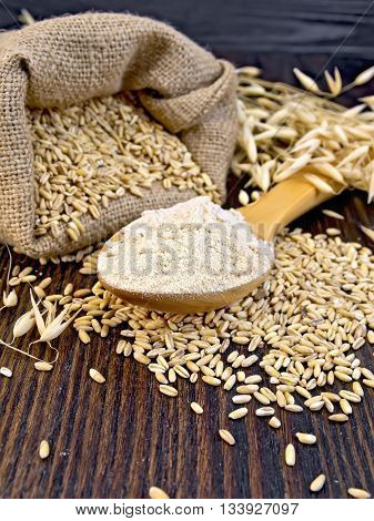 Oat flour in a wooden spoon, a bag of oats and oat stalks on a dark wooden board