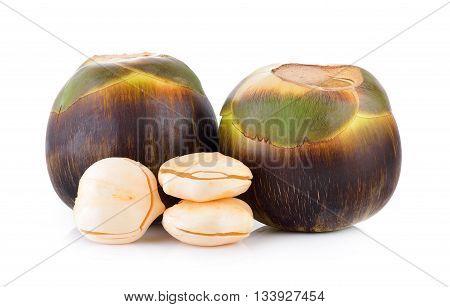 Asian Palmyra palm Toddy palm Sugar palm on white background