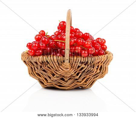 a basket of ripe juicy red currant on white background