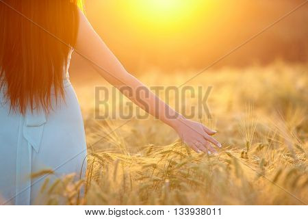 woman walking on the field. Free Happy Woman. Lit evening sun. Freedom concept.
