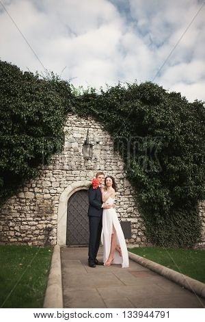 Gorgeous newlywed posing near beautiful wall of plants bushes trees in their wedding day.